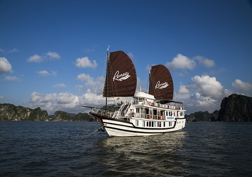 Renea Cruise - a new cruise to Bai Tu Long Bay